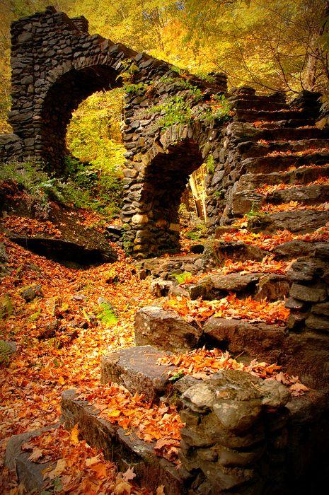 осень: развалины в ярких листьях