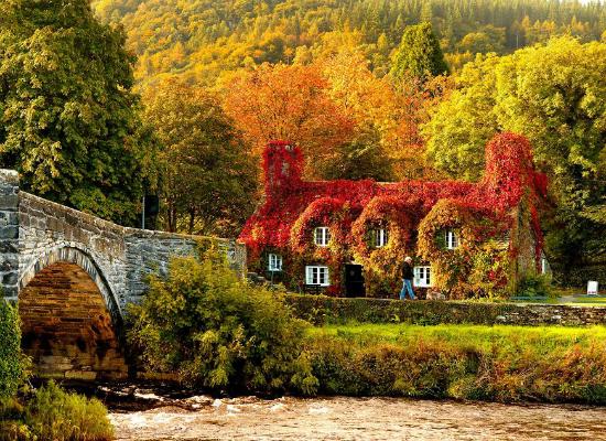 осень: английский дом, утонувший в красно-желтых листьев