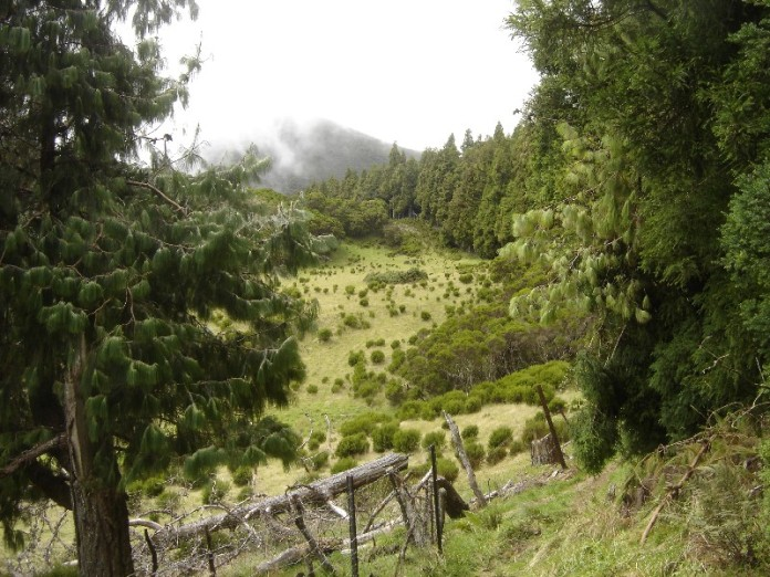 Вулканические долины-ленты на острове Реюньон