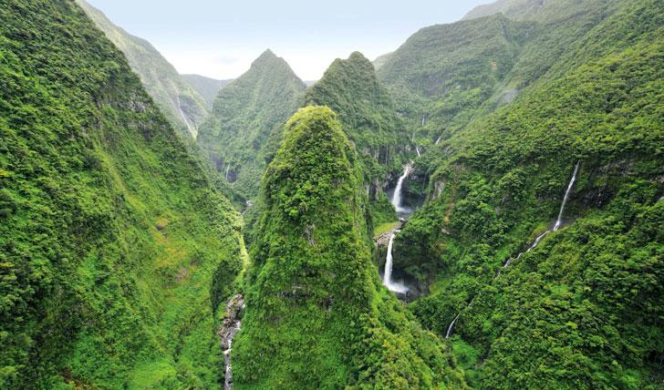одна зона острова Реюньон пышная и влажная