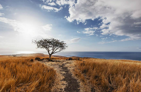 а другая пересушенная и безводная (остров Реюньон)