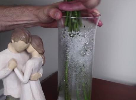 Наблюдаем, как наполнитель вырастает в вазе в объеме в 60 раз