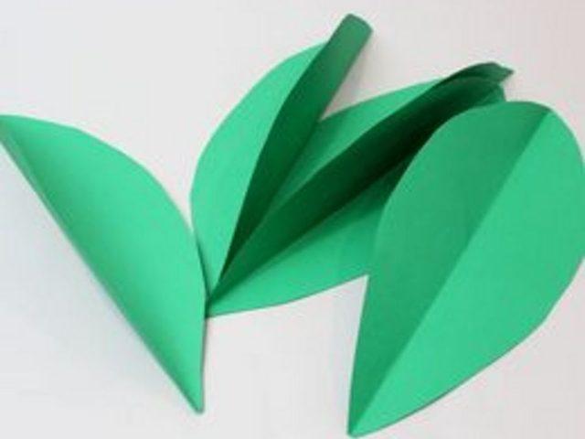 Нарежьте из плотной двусторонней зеленой бумаги крупных листьев самой обычной чуть вытянутой и заостренной формы