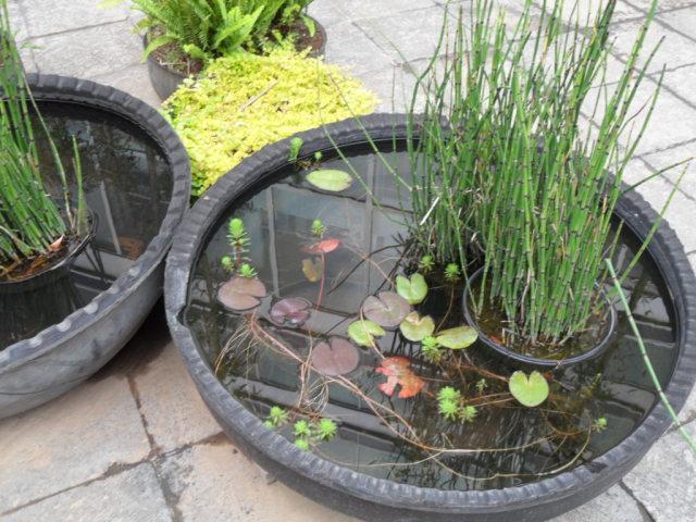 наземный сад, составленный из композиций прудиков и травы в шинах