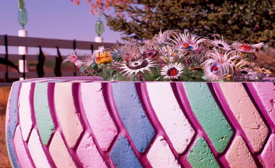 Интересный вариант расцветки для клумбы из шины