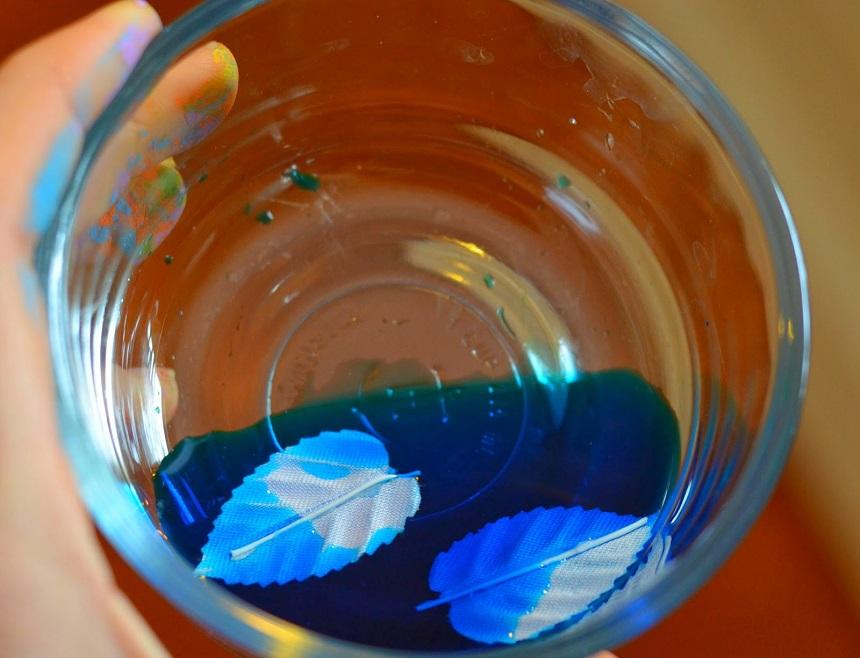 Пока шишки сохнут, в небольшом количестве воды в стеклянных стаканах разведите пищевую краску и вымачивайте в ней 10 минут по 2 листа-крылышка для каждой феи
