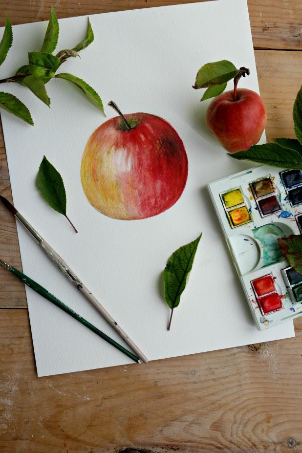 Как профессионально нарисовать яблоко акварелью