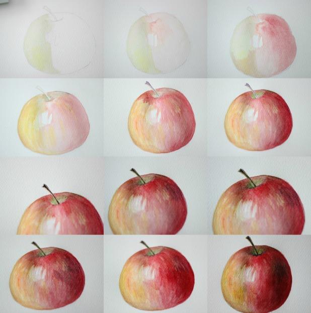 пошаговый прогресс рисования яблока акварелью в картинках