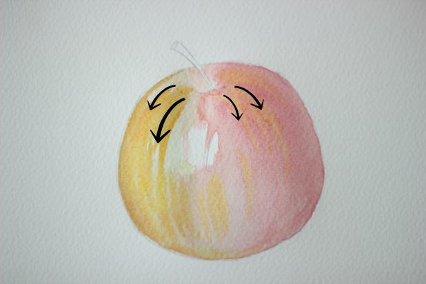 ваши движения кистью должны повторять начальный контур яблока