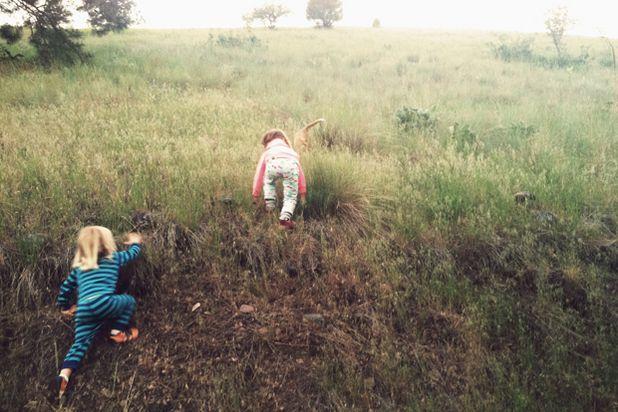 дети в пижамах карабкаются на холм