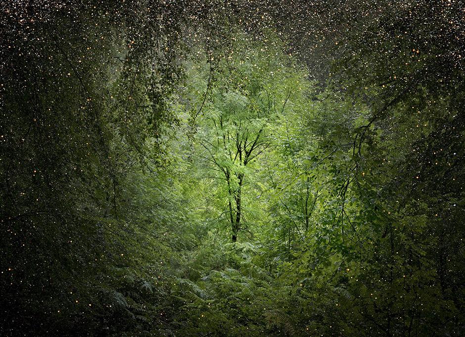 Дождь из звезд