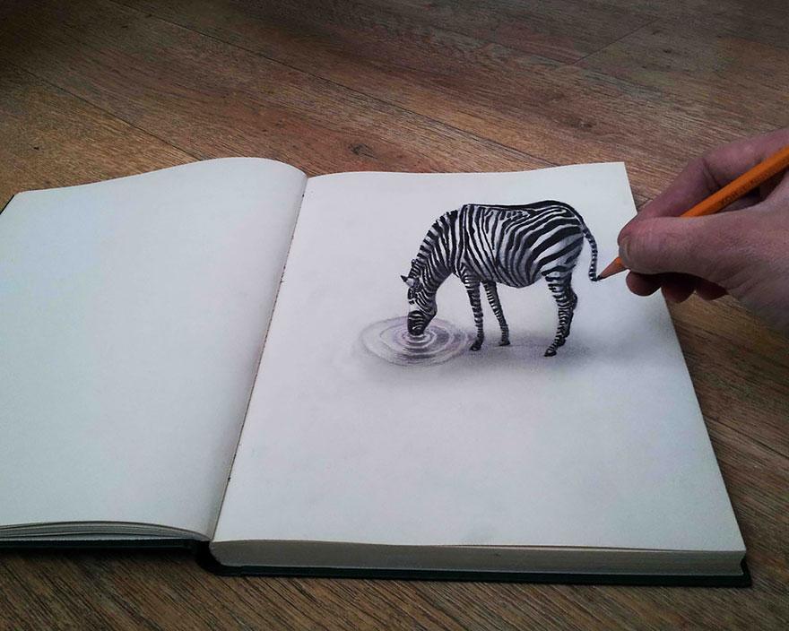 3D рисунок (объемный) на бумаге: зебра на водопое