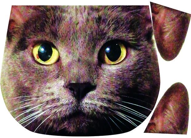 Изображение на ткань можно распечатать частями (как здесь уши кота отдельно)