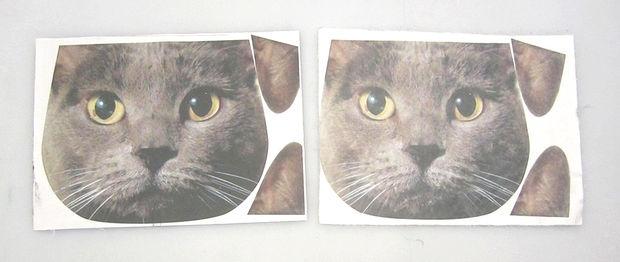 для сравнения на снимке представлены примеры отпечатанных и выстиранных изображений на 100% хлопке и 100% полиэстере