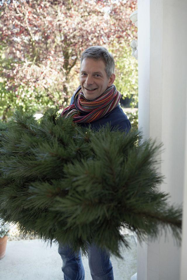 мужчина заносит новогоднюю елку в дом