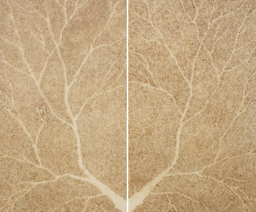картины прожиганием отверстий в бумаге: лист дерева на свет