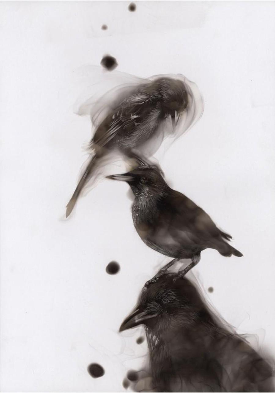 Как художники рисуют огнем - Стивен Спазук (Steven Spazuk): птица на голове у птицы на голове у птицы