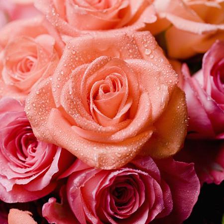 С букетом роз ошибиться, в принципе, нельзя