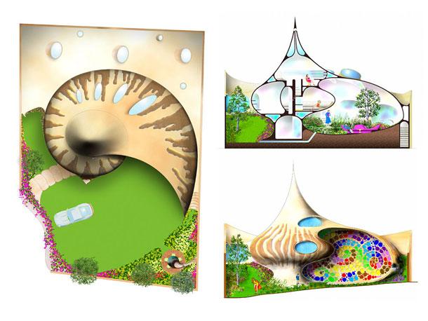 Как выглядит Топ-10+ домов мира с самой экстравагантной планировкой - Дом в гигантской раковине, планировка