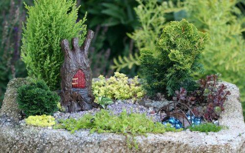 сад фей для дачного участка