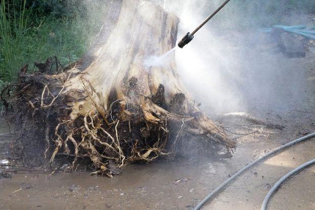 помывка выкорчеванного пня мойкой высокого давления со шлангом