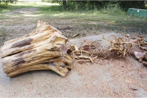 избавьтесь от корней полностью