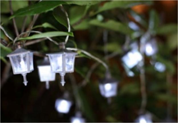 белые фонарики на дереве