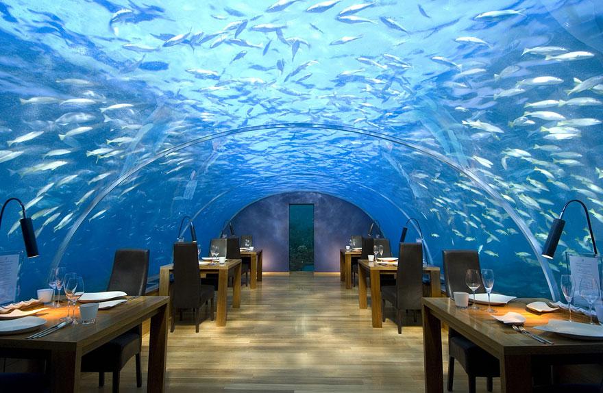 Гостиница «Conrad Maldives Rangali Island», Атолл Арии, Мальдивы - подводный ресторан