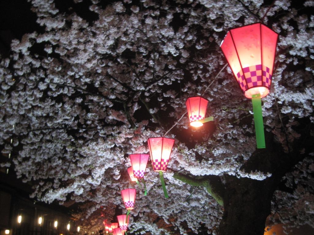 Фестиваль цветения вишни и снова светящихся фонариков в Японии