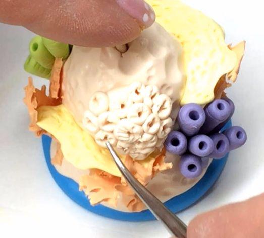 Украсьте риф короткими трубчатыми водорослями из полимерной глины