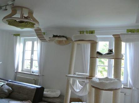 лежак-комплекс для кошек - под потолком и на стенах