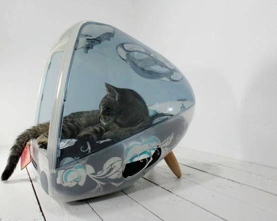 лежак для кошек - в мониторе