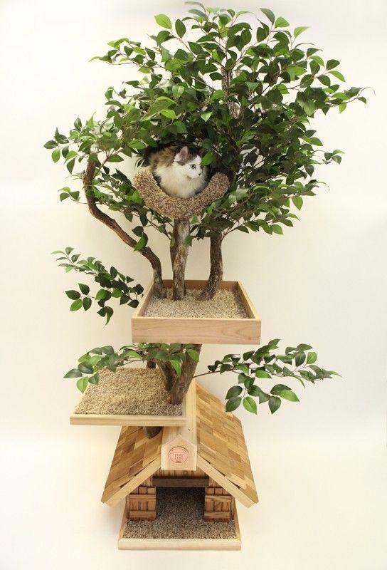 лежак-комплекс для кошек - дерево