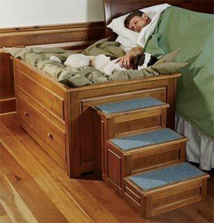 лежак для собаки рядом с постелью человека