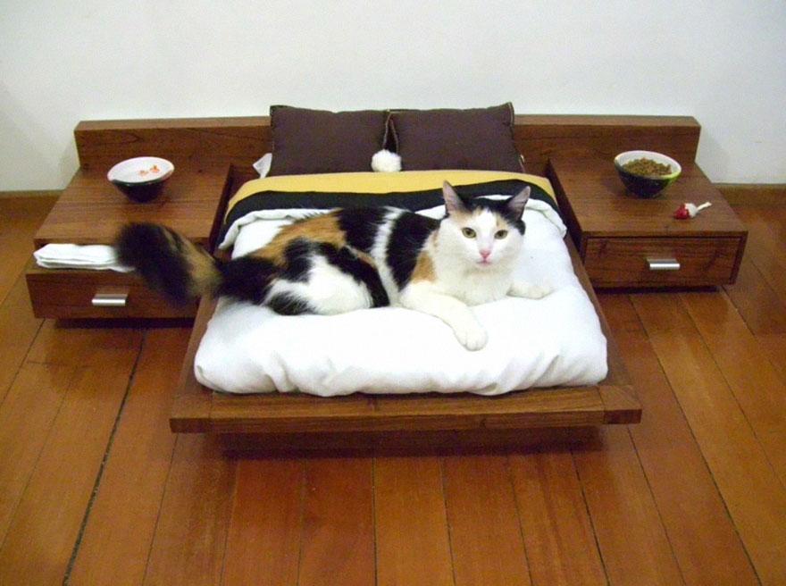 супер-кровать для кота