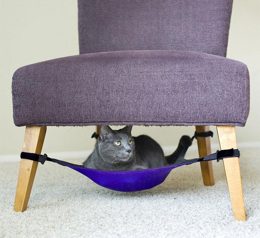 растяжка на ножках кресла и стула - лежак для кота