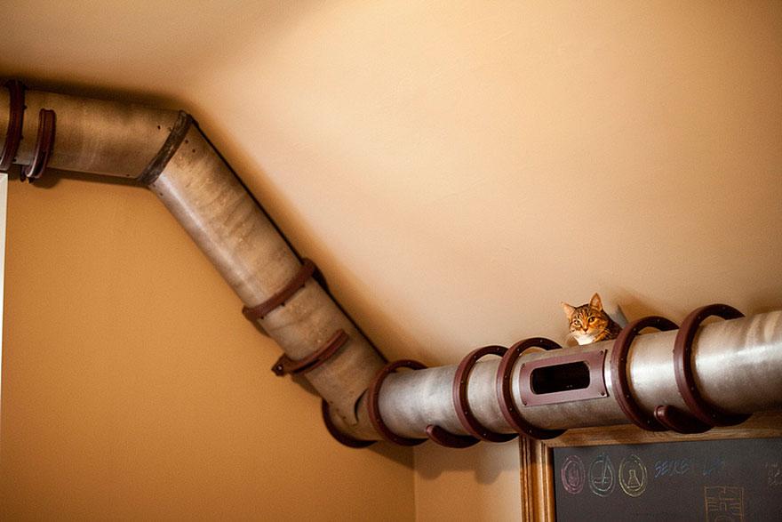 домик-туннель для транзита котов