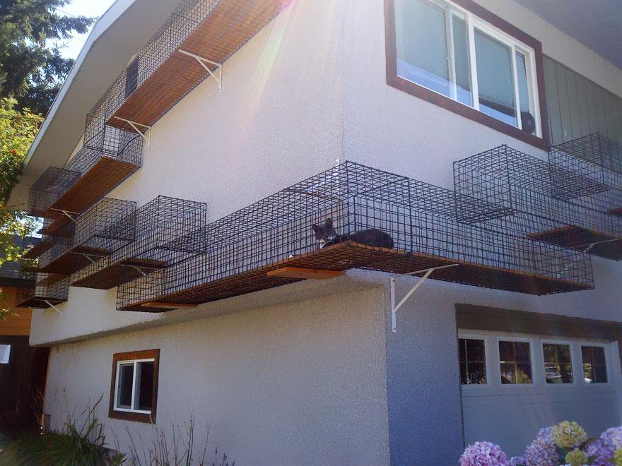 частный дом - дорожки домики для передвижения котов по фасаду дома