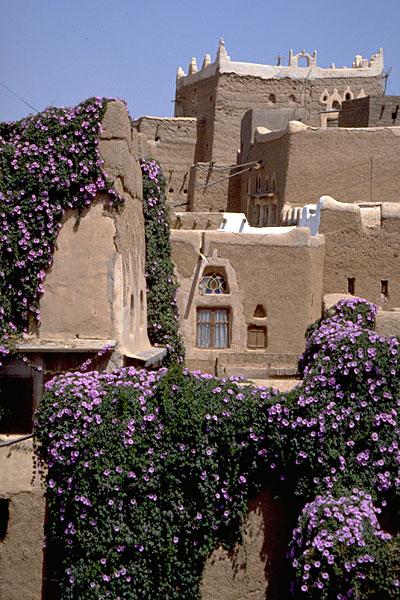 Сана, Йемен (Sana'a, Yemen)