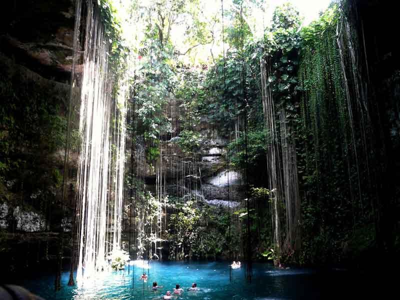 Чичен-Ица в Мексике карстовые воронки–сеноты для воды со спускающимися вниз длинными растениями