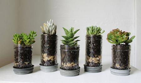 Ряд из таких горшочков - с миниатюрными по своей природе комнатными цветами - на полке будет выглядеть как нельзя лучше