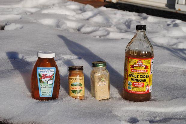Ингредиенты для приготовления натурального тоника своими руками