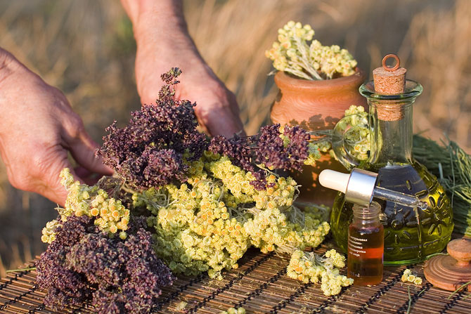 травы и эфирное масло