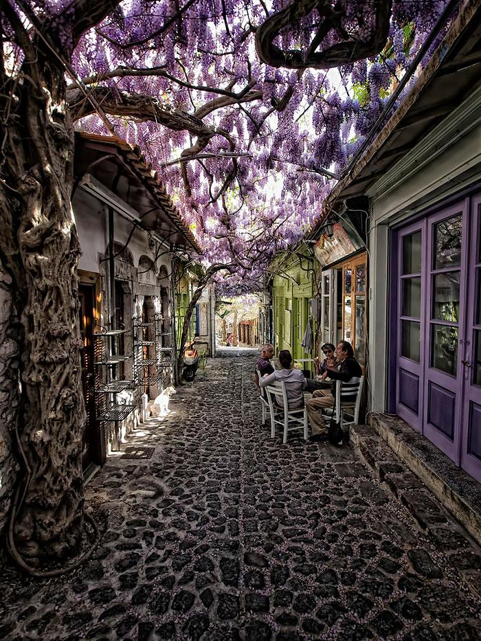 Моливос, Лесбос – Греция: улицы под цветочным пологом