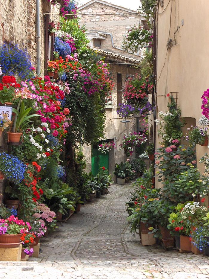 Спелло - Италия: вертикальное садоводство