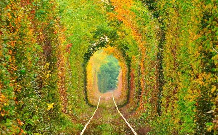 Туннель любви - Румыния, Карас-Северин: улицы под пологом деревьев