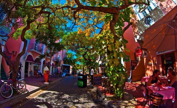 Эспаньола Уэй – «Испанский путь» - Майами, США: улицы под сенью деревьев
