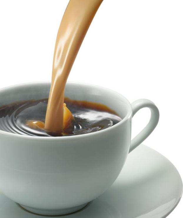 кофе отпугивает улиток