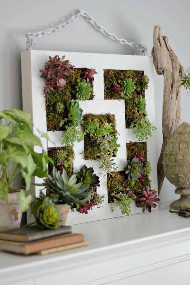 Другой вариант «зеленой картины» из суккулентов – практически точно такая же методика создания и посадки