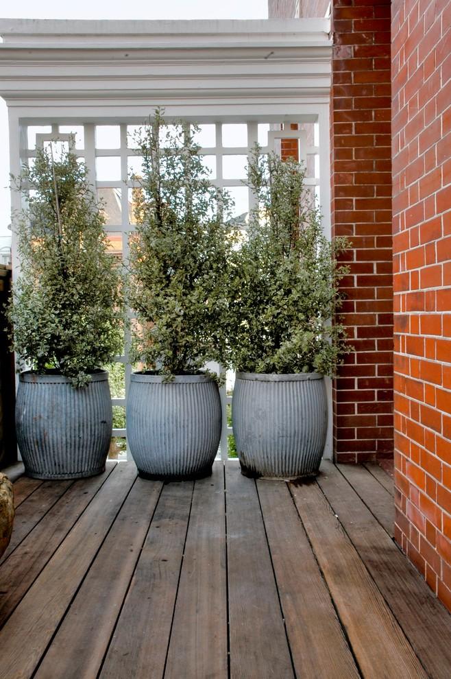 Как добиться уединения на дачном участке: современные заборы и аналоги - сад-забор в горшках